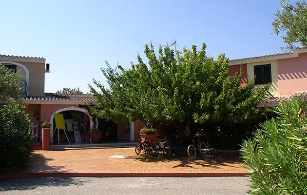 Nicolaus Club Alba Dorata